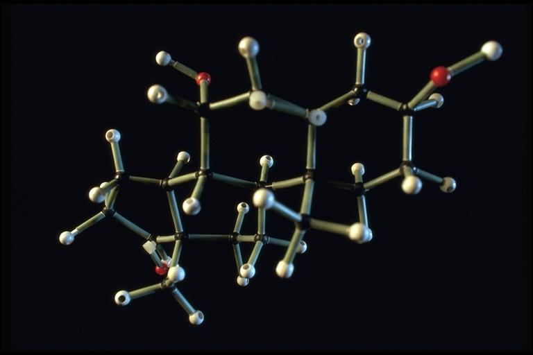 Recherche en Biotechnologie